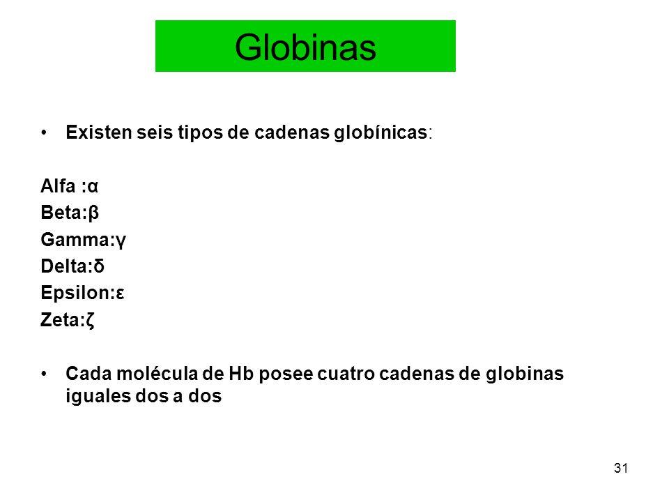 Globinas Existen seis tipos de cadenas globínicas: Alfa :α Beta:β
