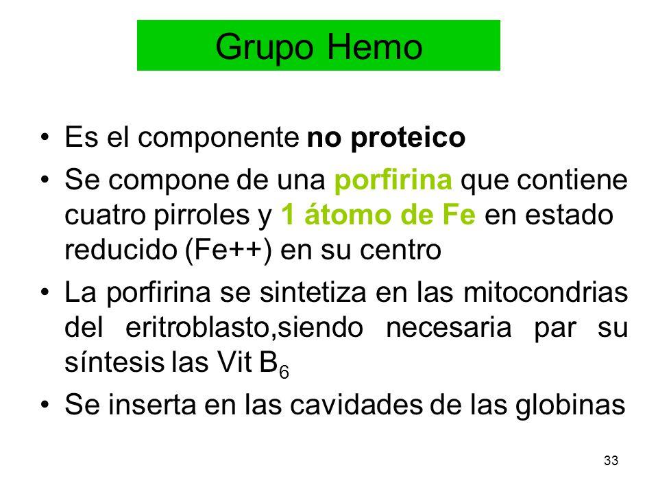 Grupo Hemo Es el componente no proteico