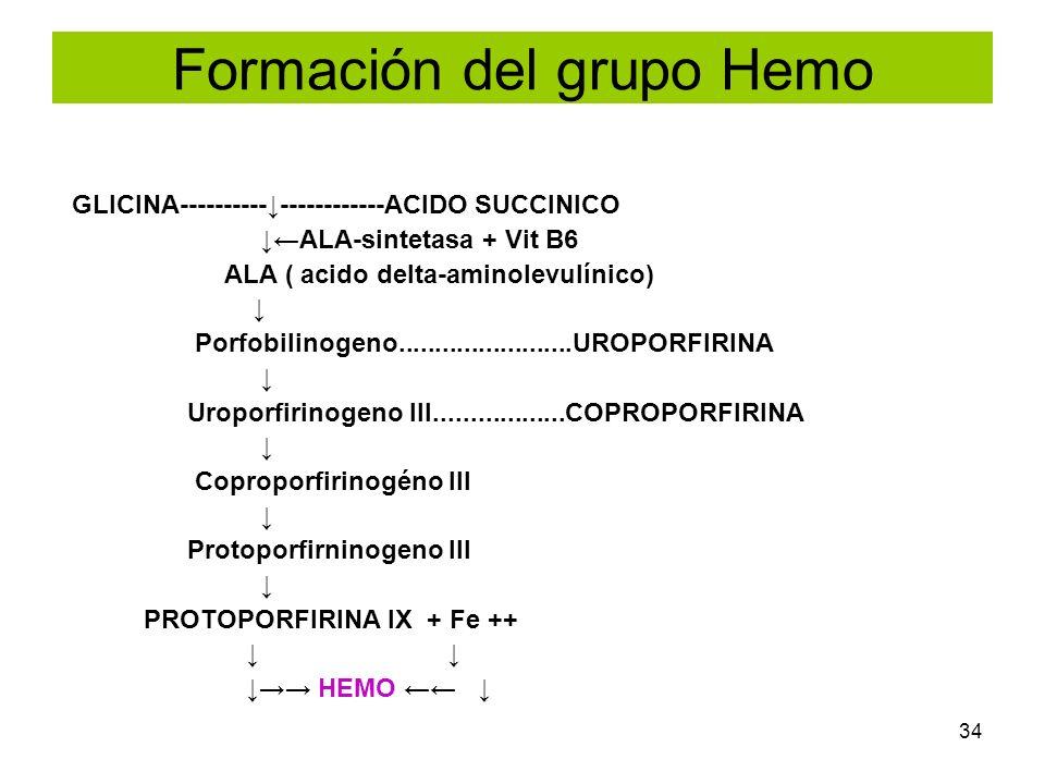 Formación del grupo Hemo