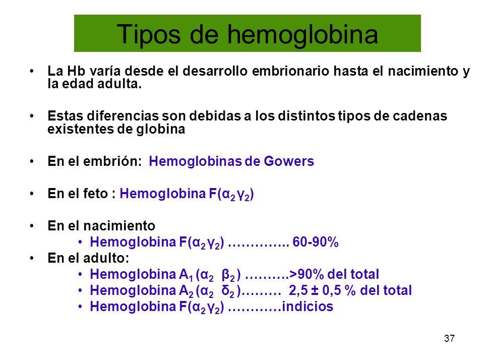 Tipos de hemoglobina La Hb varía desde el desarrollo embrionario hasta el nacimiento y la edad adulta.