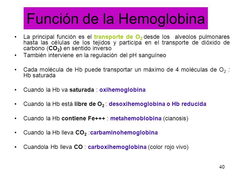 Función de la Hemoglobina
