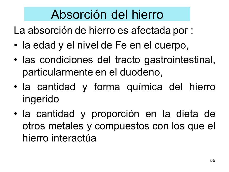 Absorción del hierro La absorción de hierro es afectada por :