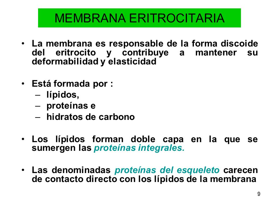 MEMBRANA ERITROCITARIA