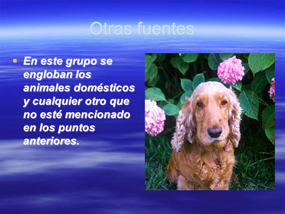 Otras fuentes En este grupo se engloban los animales domésticos y cualquier otro que no esté mencionado en los puntos anteriores.