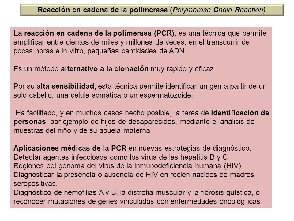 Reacción en cadena de la polimerasa (Polymerase Chain Reaction)