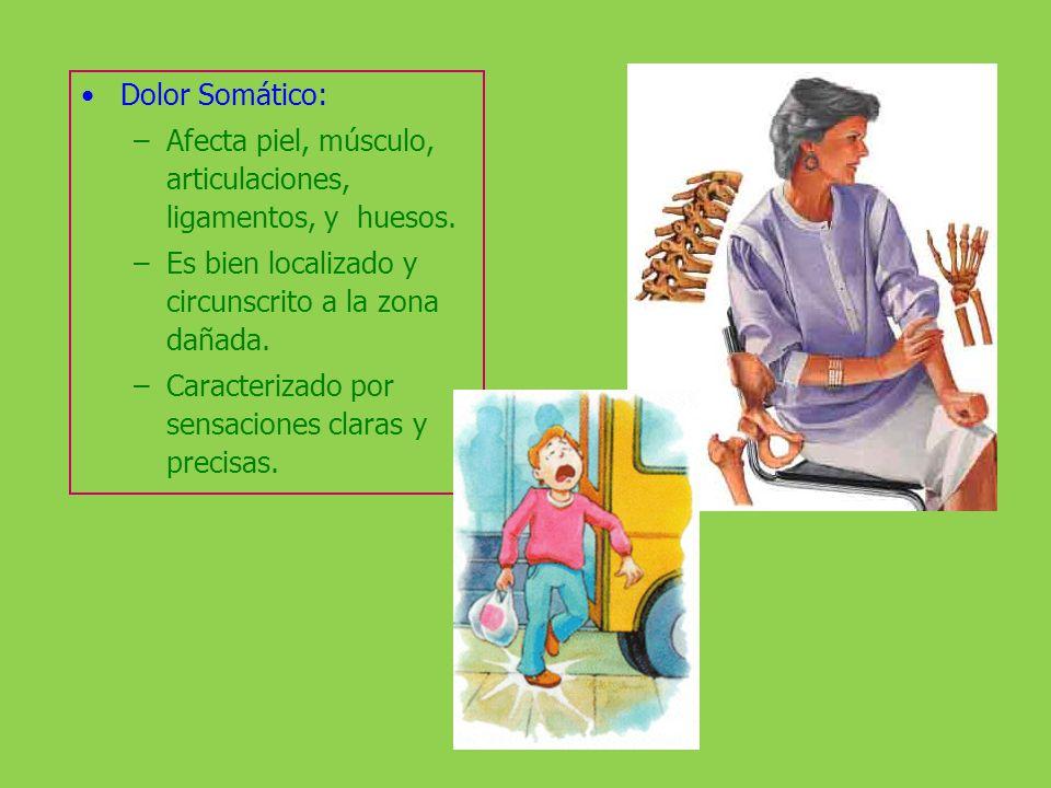 Dolor Visceral: Producido por lesiones y/o enfermedades que afectan órganos internos. Causas: Espasmos de musculatura lisa de una víscera.