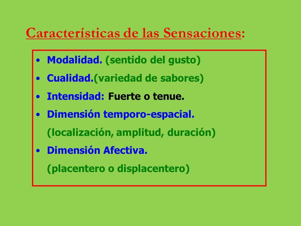 Clasificación de los receptores sensoriales