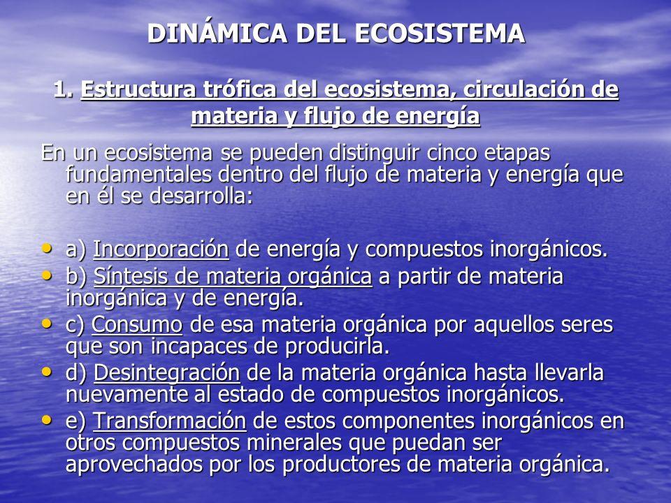 DINÁMICA DEL ECOSISTEMA 1