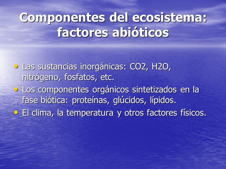 Componentes del ecosistema: factores abióticos