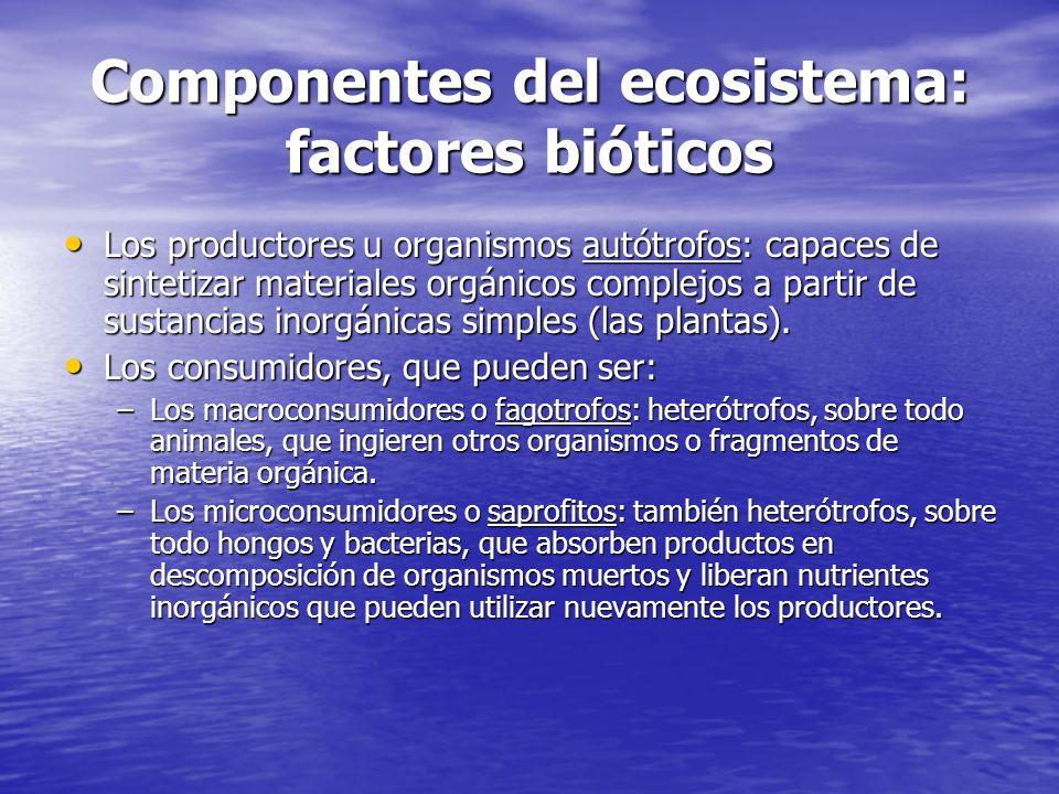 Componentes del ecosistema: factores bióticos