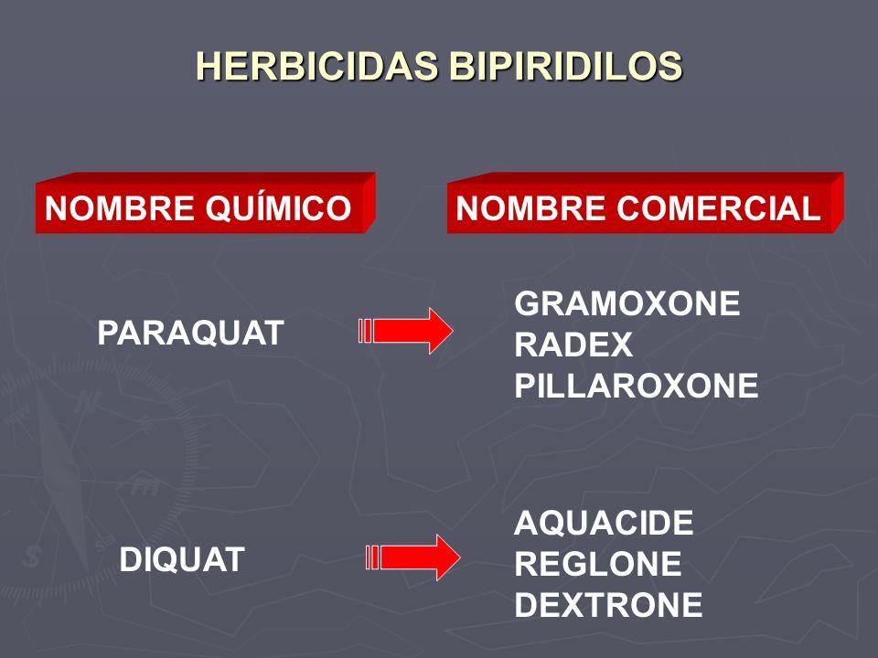 HERBICIDAS BIPIRIDILOS
