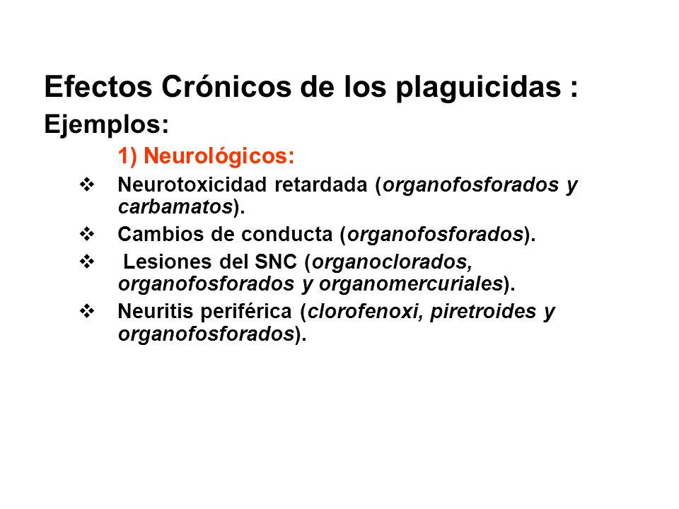 Efectos Crónicos de los plaguicidas :