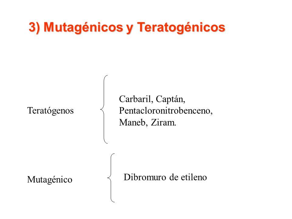 3) Mutagénicos y Teratogénicos