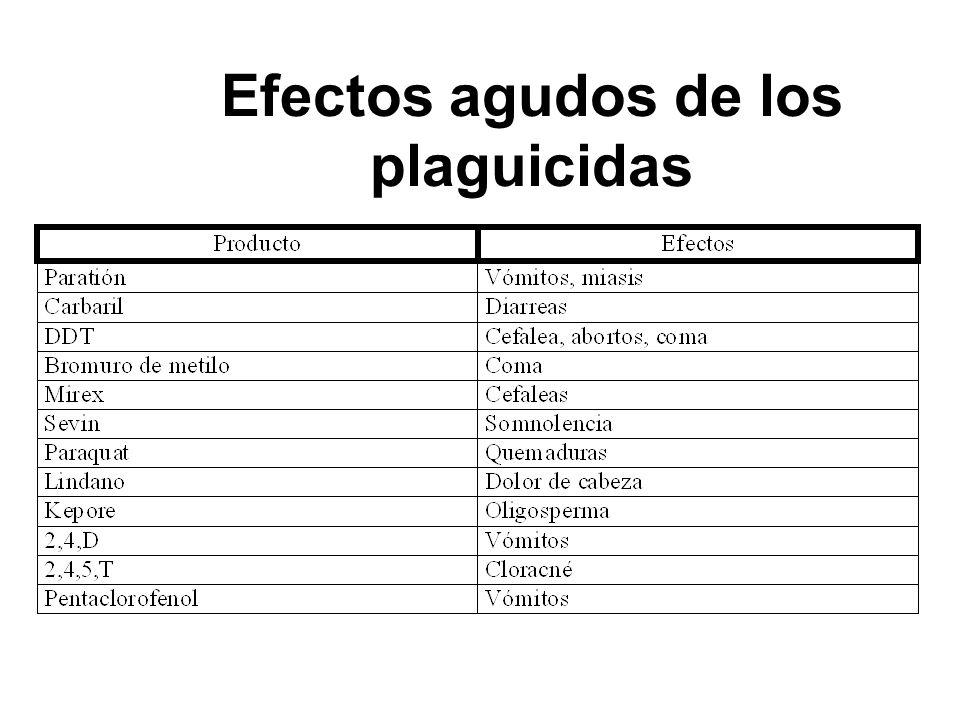 Efectos agudos de los plaguicidas