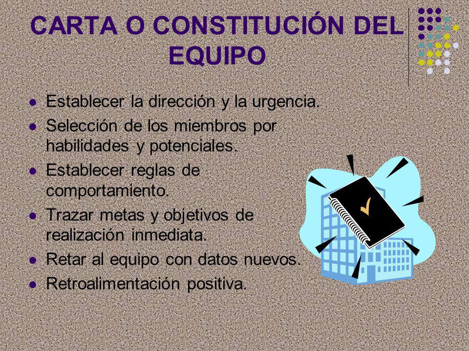 CARTA O CONSTITUCIÓN DEL EQUIPO
