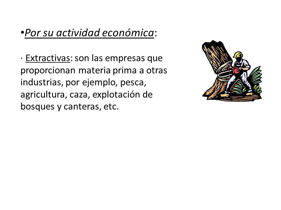 Por su actividad económica: