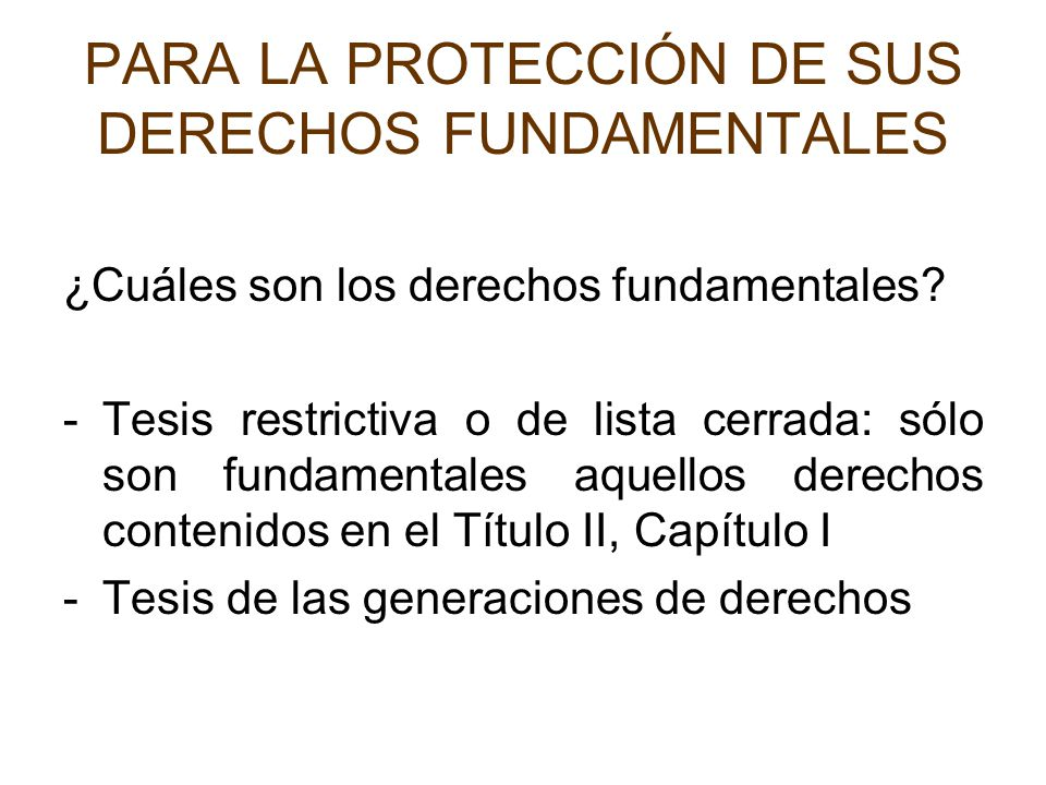 PARA LA PROTECCIÓN DE SUS DERECHOS FUNDAMENTALES