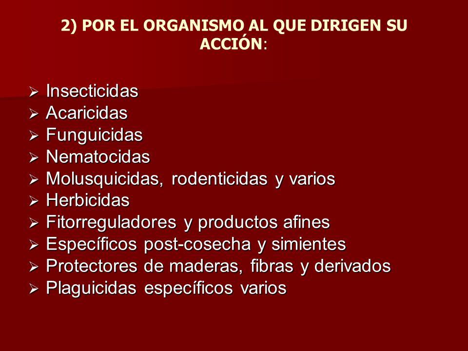 2) POR EL ORGANISMO AL QUE DIRIGEN SU ACCIÓN: