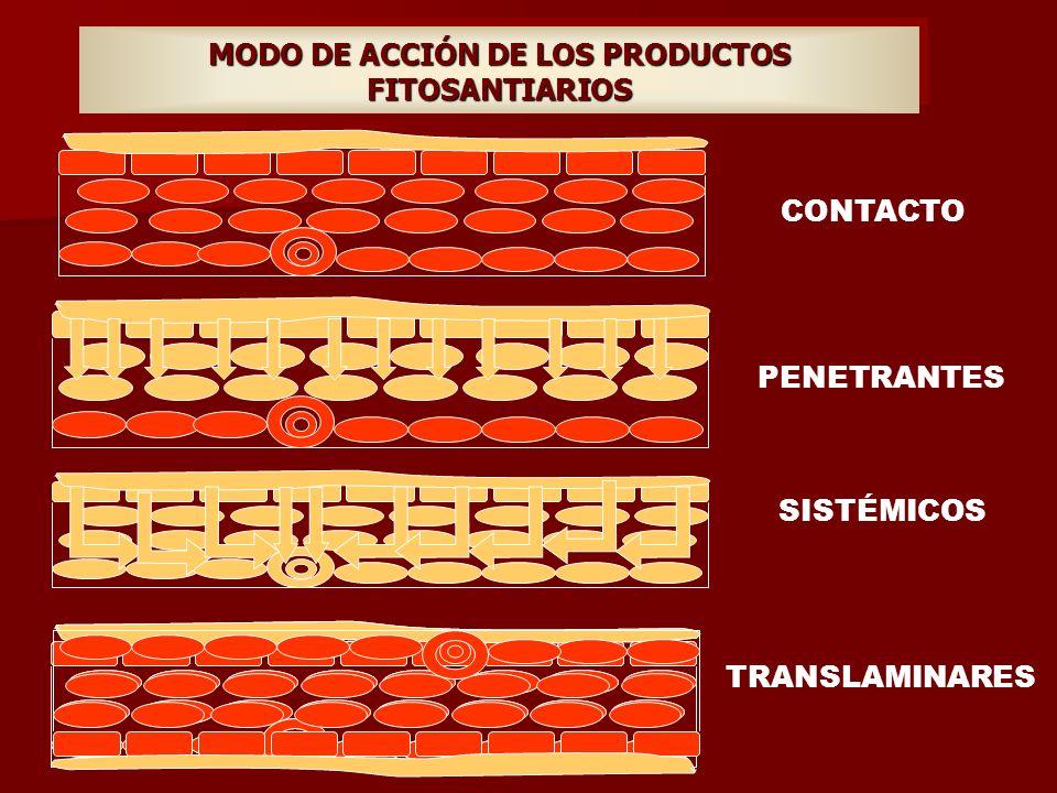 MODO DE ACCIÓN DE LOS PRODUCTOS FITOSANTIARIOS