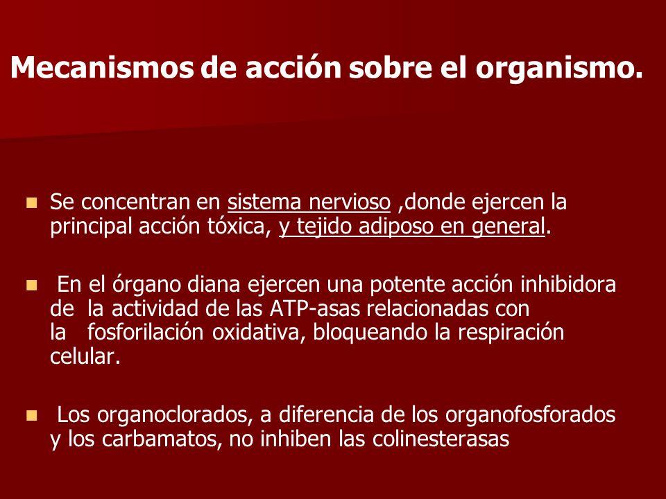 Mecanismos de acción sobre el organismo.