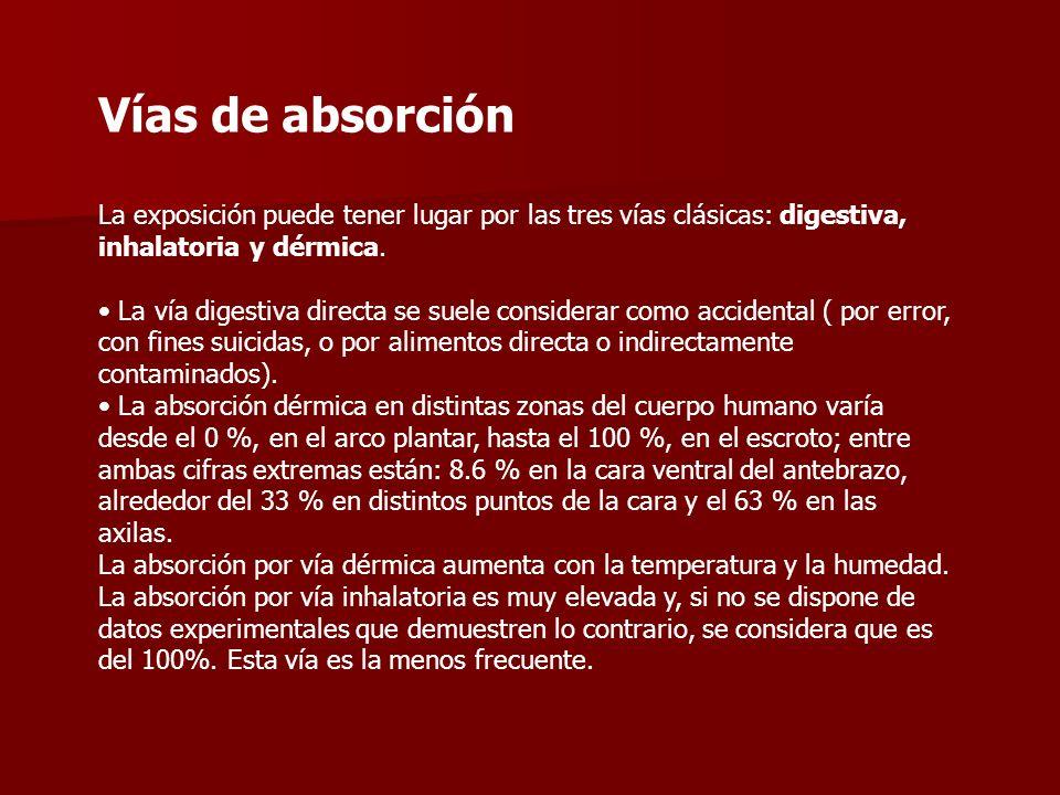 Vías de absorción La exposición puede tener lugar por las tres vías clásicas: digestiva, inhalatoria y dérmica.