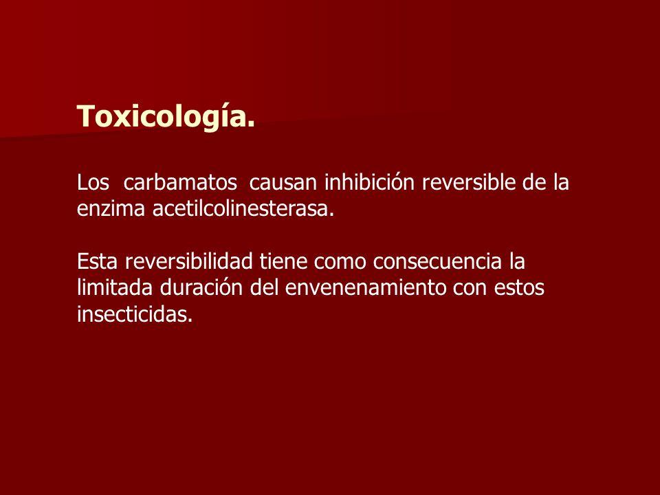 Toxicología. Los carbamatos causan inhibición reversible de la enzima acetilcolinesterasa.
