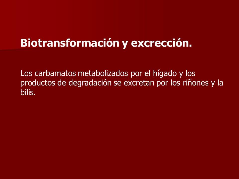 Biotransformación y excrección.