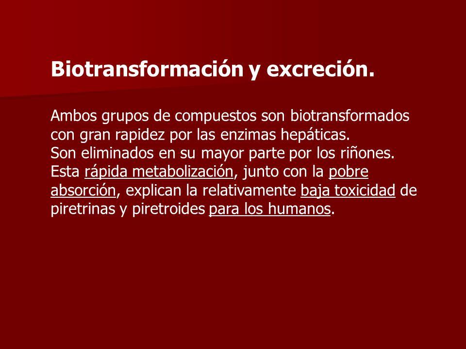 Biotransformación y excreción.