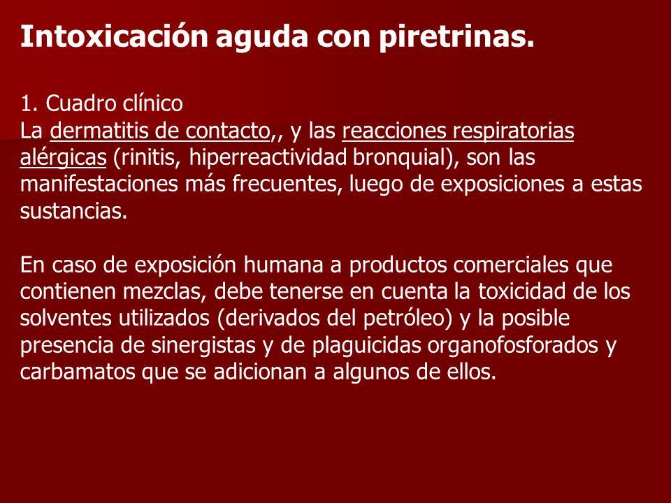 Intoxicación aguda con piretrinas.