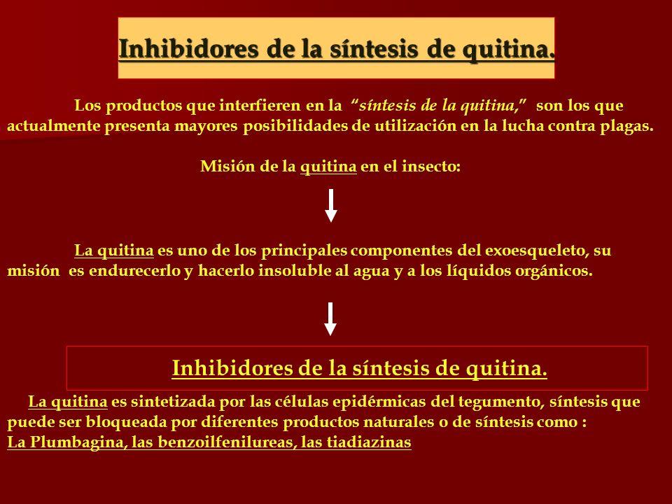 Inhibidores de la síntesis de quitina.