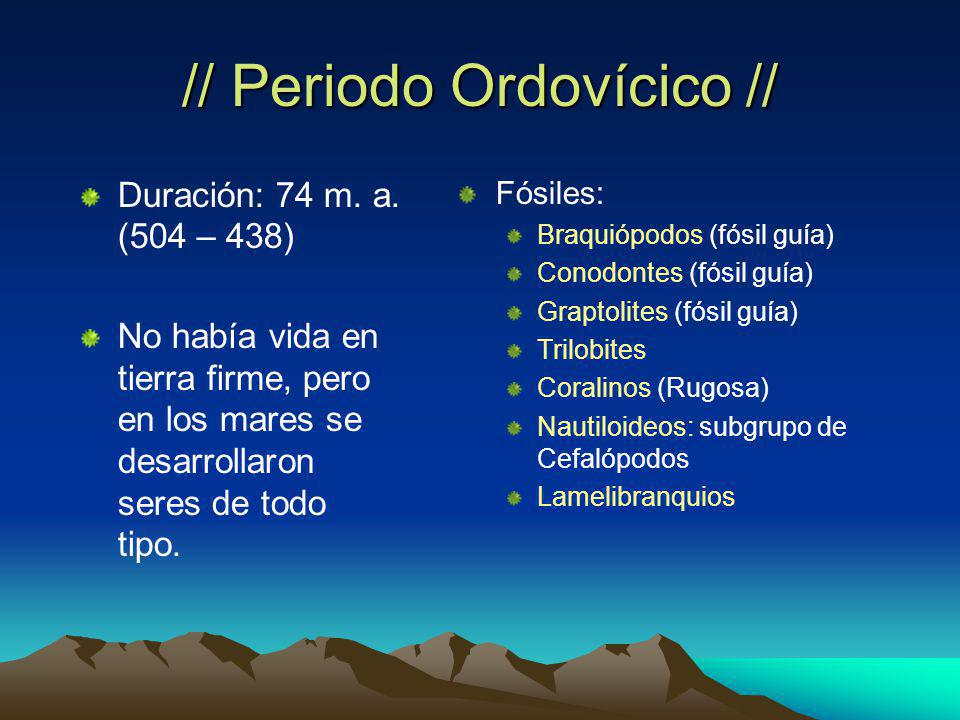 // Periodo Ordovícico //