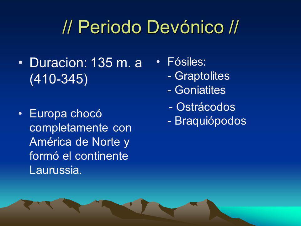// Periodo Devónico // Duracion: 135 m. a (410-345)