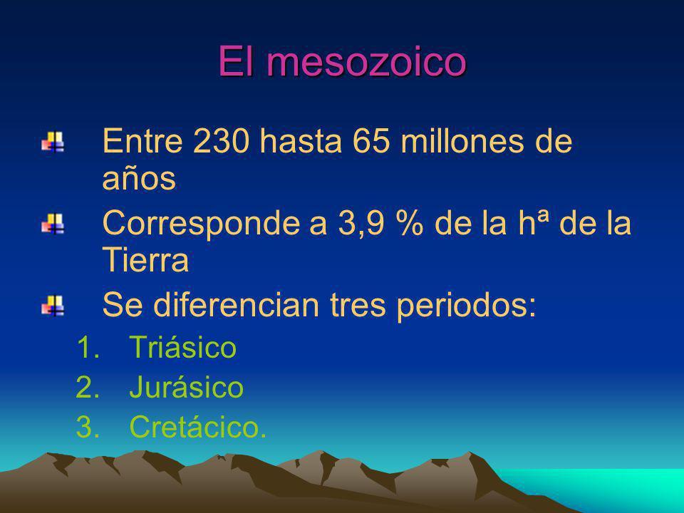 El mesozoico Entre 230 hasta 65 millones de años