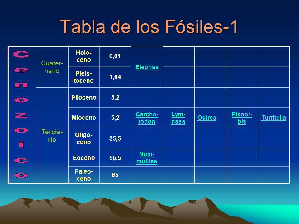 Tabla de los Fósiles-1 Cenozoico Cuater-nario Tercia-rio Holo-ceno