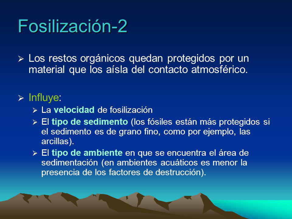 Fosilización-2 Los restos orgánicos quedan protegidos por un material que los aísla del contacto atmosférico.