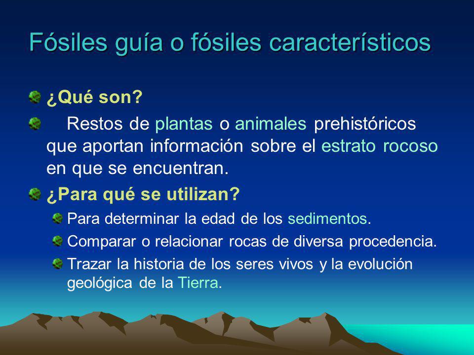 Fósiles guía o fósiles característicos
