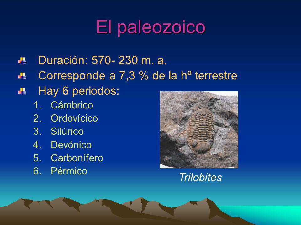 El paleozoico Duración: 570- 230 m. a.