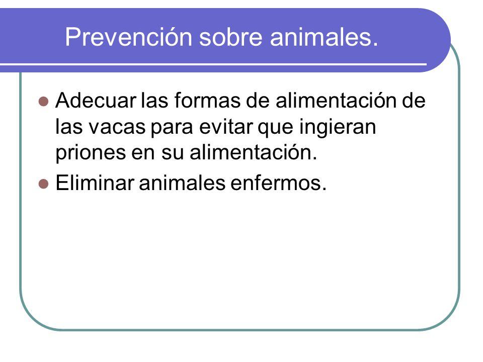 Prevención sobre animales.