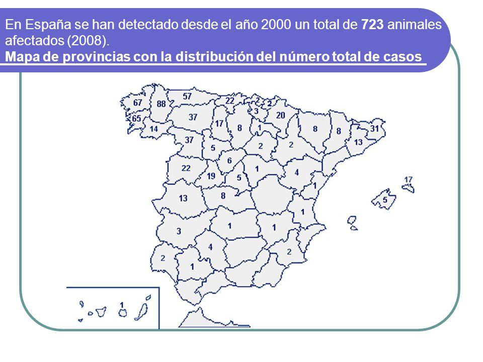 En España se han detectado desde el año 2000 un total de 723 animales afectados (2008).