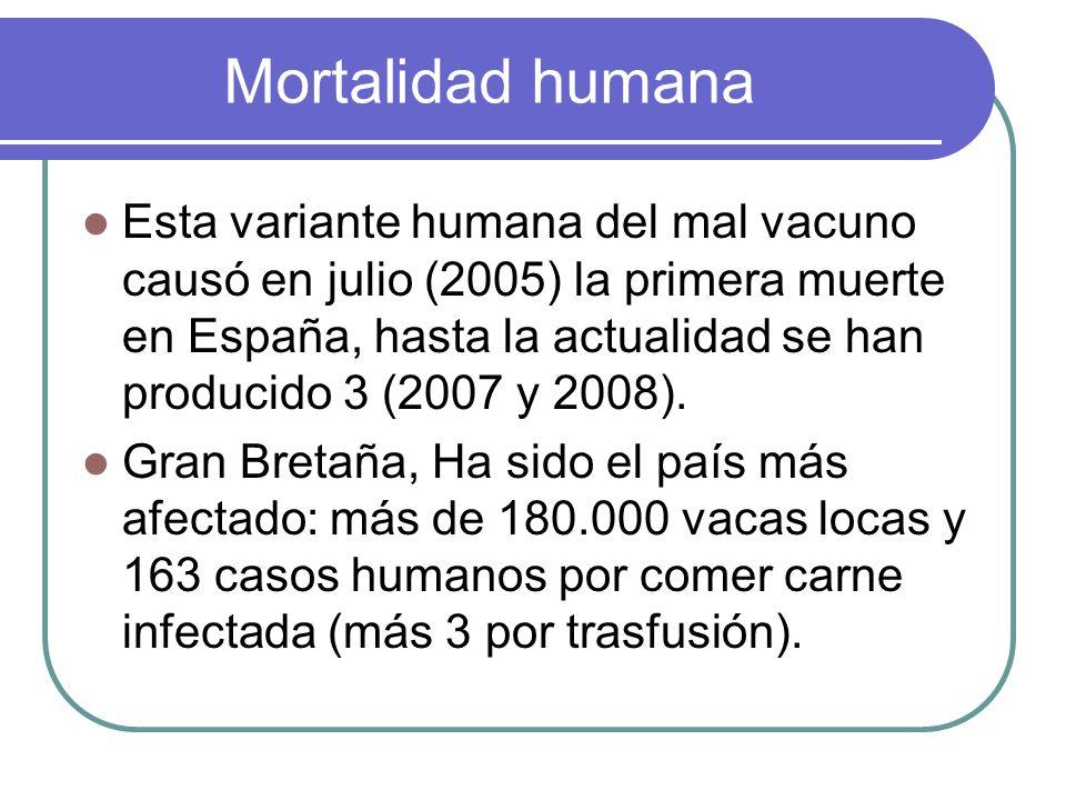 Mortalidad humana
