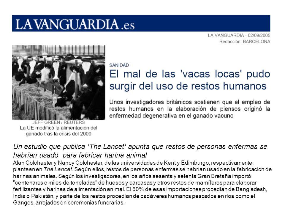 Un estudio que publica The Lancet' apunta que restos de personas enfermas se habrían usado para fabricar harina animal