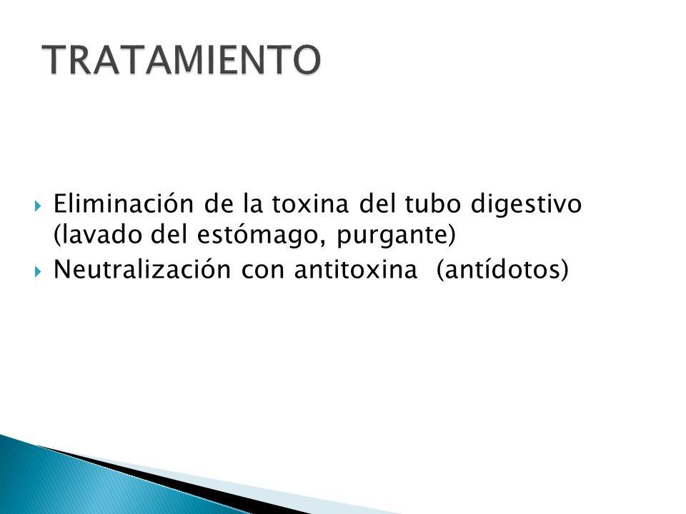 TRATAMIENTO Eliminación de la toxina del tubo digestivo (lavado del estómago, purgante) Neutralización con antitoxina (antídotos)