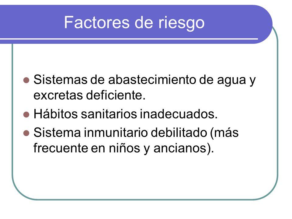 Factores de riesgo Sistemas de abastecimiento de agua y excretas deficiente. Hábitos sanitarios inadecuados.