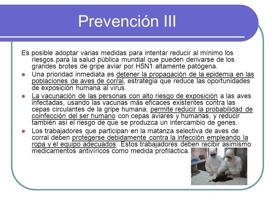Prevención III