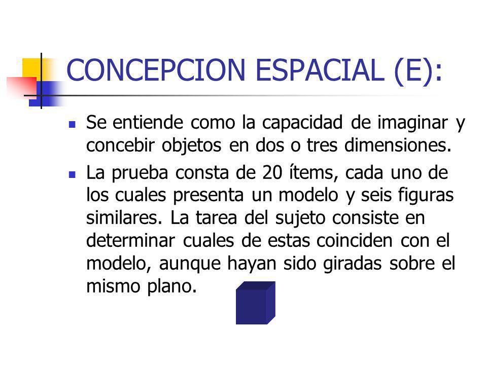 CONCEPCION ESPACIAL (E):