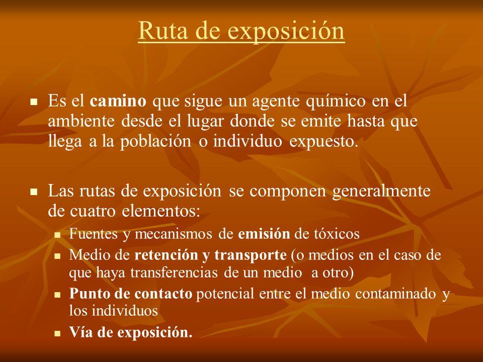 Ruta de exposición
