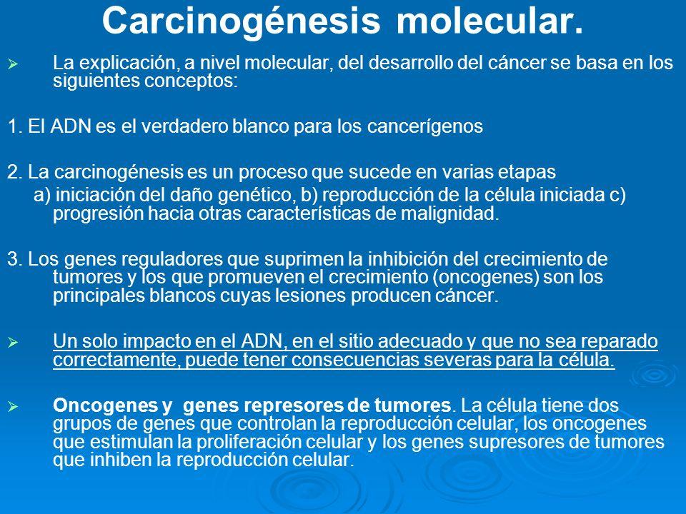 Carcinogénesis molecular.