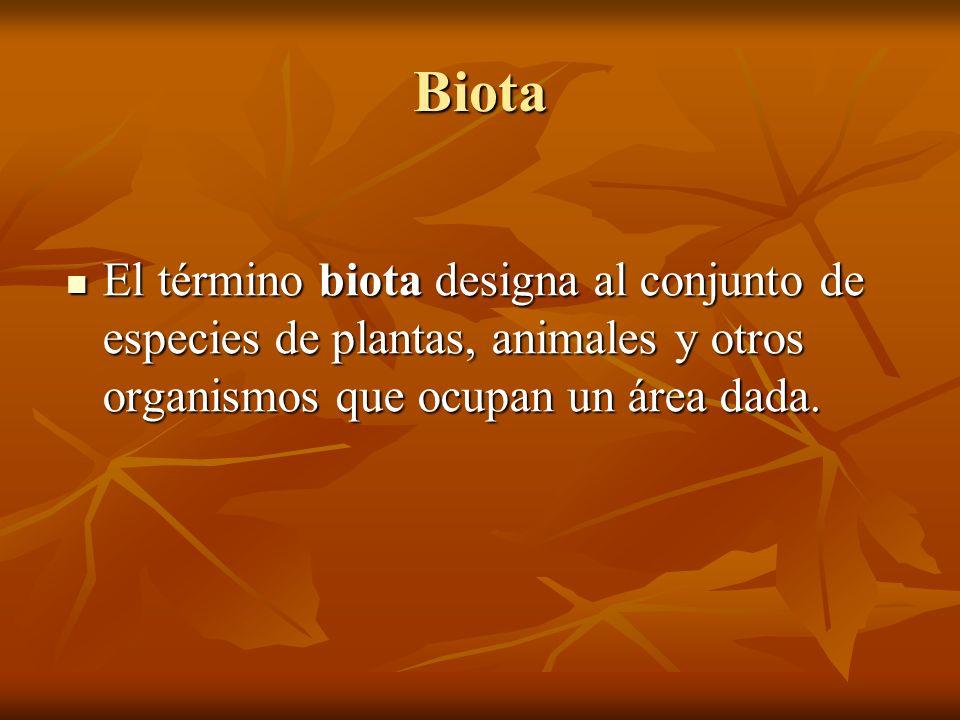 Biota El término biota designa al conjunto de especies de plantas, animales y otros organismos que ocupan un área dada.