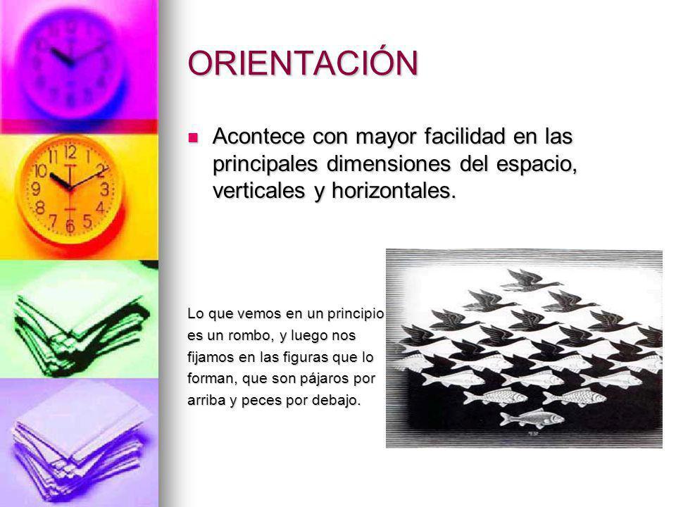 ORIENTACIÓN Acontece con mayor facilidad en las principales dimensiones del espacio, verticales y horizontales.