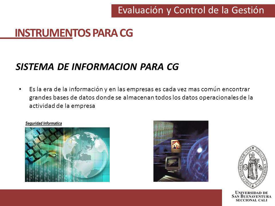SISTEMA DE INFORMACION PARA CG
